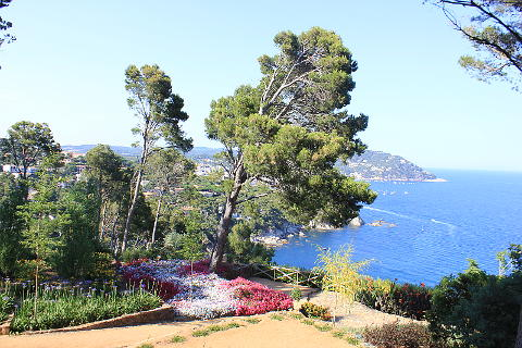 Jardins de cap roig spain a stunning garden on the costa for Jardines cap roig