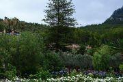 belmond-garden