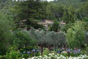 belmond-garden2