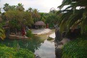 port-aventura-polynesia-area