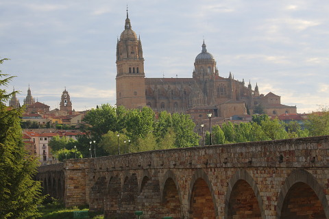 Old cathedral and Roman bridge of Salamanca