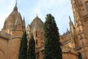 catedral-vieja